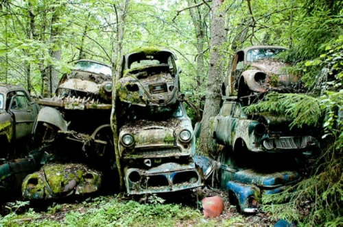 876017144d4aa9707851cfea56365318--rusty-cars-vw-beetle.jpg
