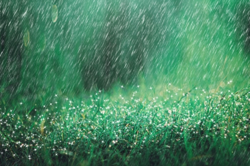 forte-pluie-pluie-fond-prairie-sparkle-bokeh-il-pleut-dans-nature_79161-580.jpg