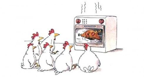 ob_eee133d358dbfd8c073b6e1b8dfa60a4_poulet-realite.jpg
