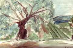 Paint37.JPG